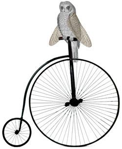 hibou à bicyclette